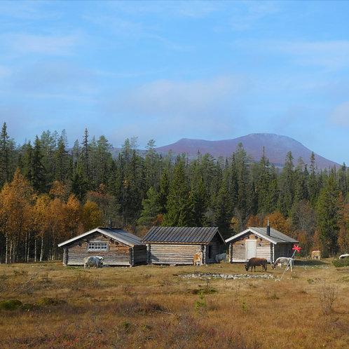 Ny bok : Eldsjälar i utmarken