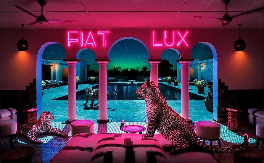 Africa IV - Fiat Lux