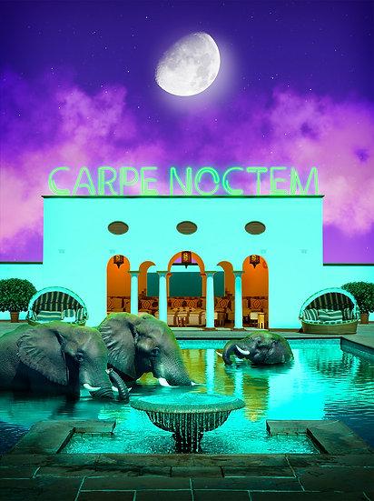 Africa III - Carpe Noctem