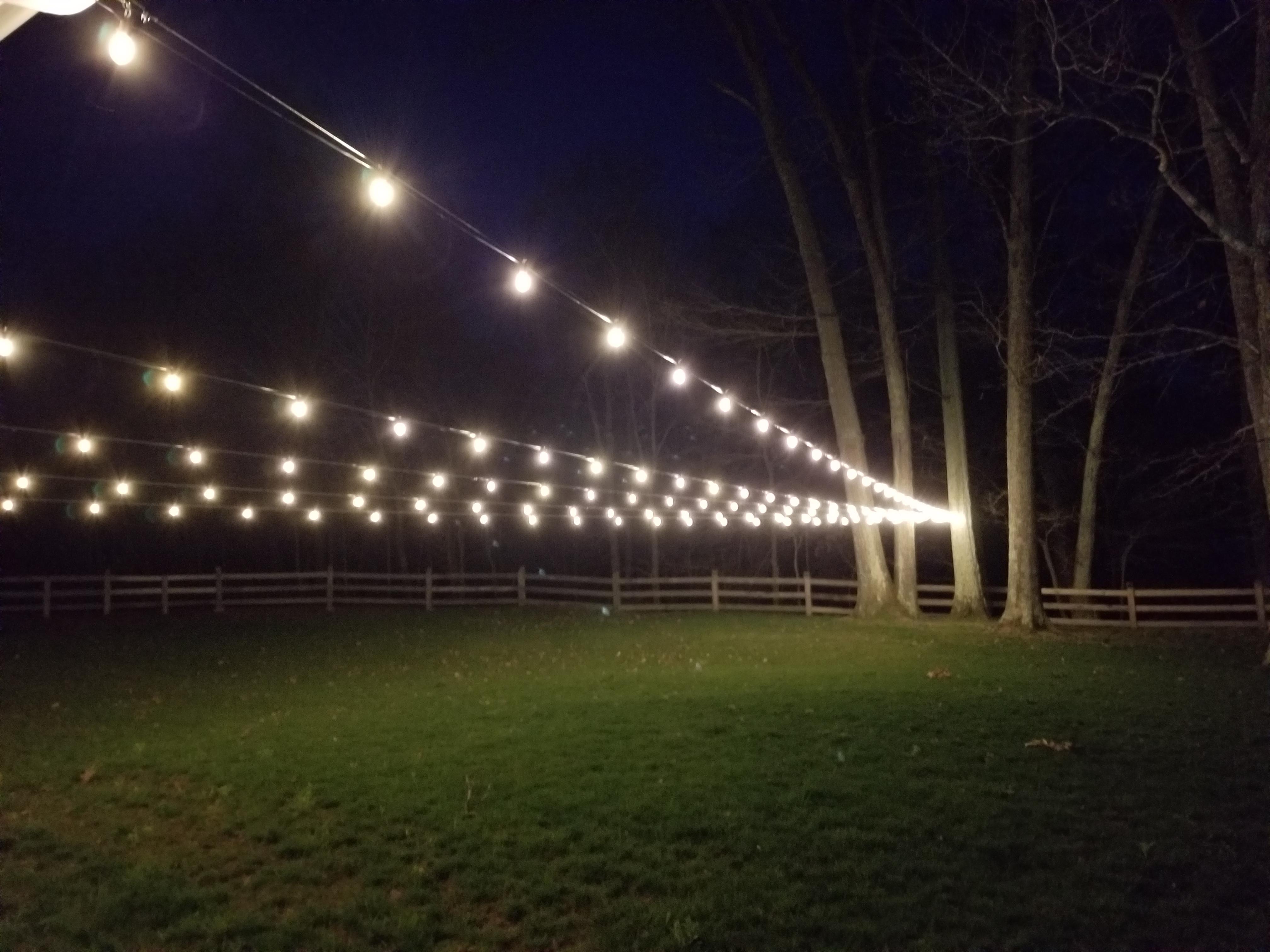 Side yard string lights.jpg