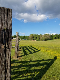 Corral fence 2.jpg