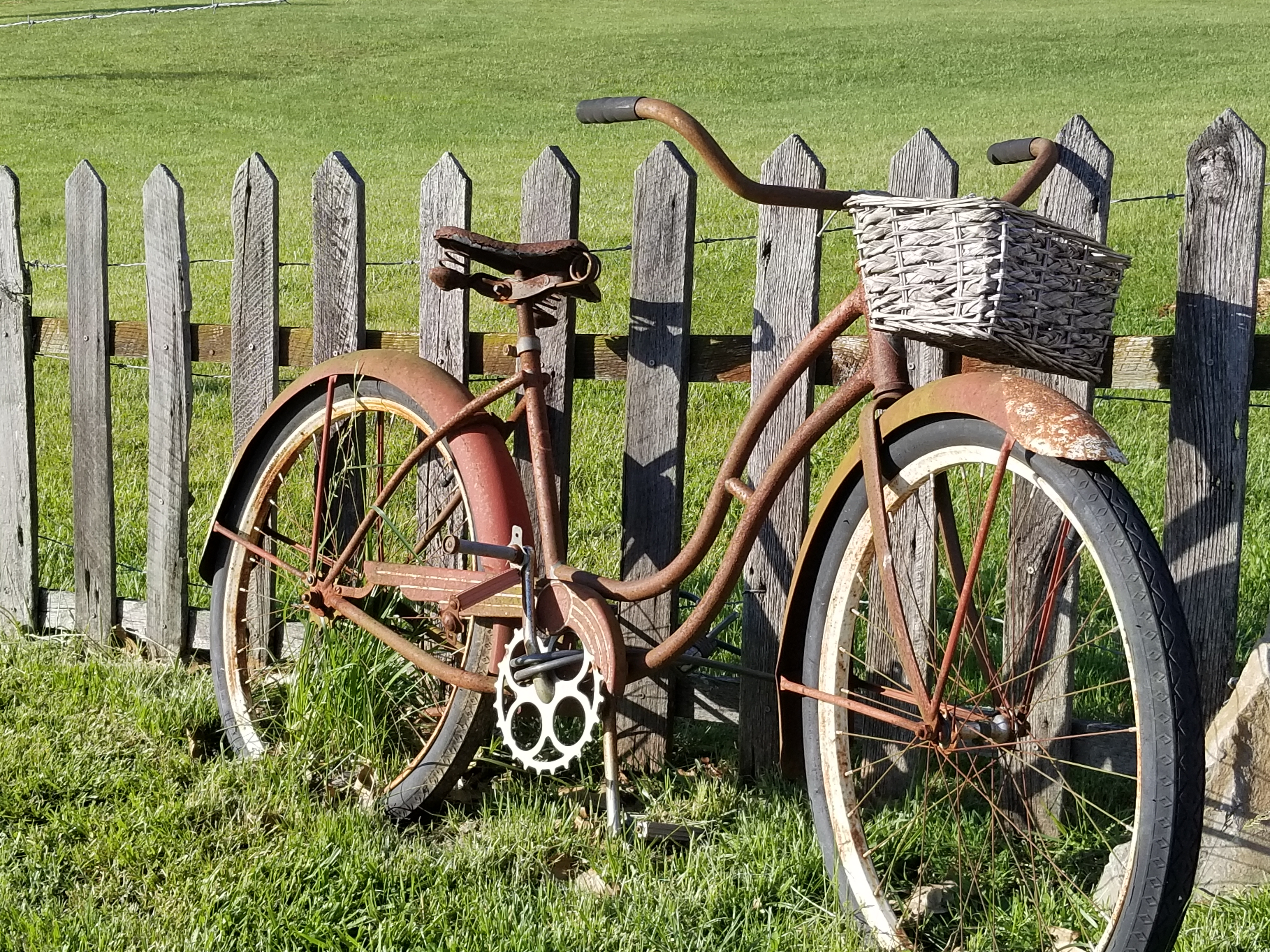 Bicycle and fence.jpg