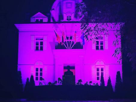 Think Pink - Blaasveld