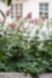 180703-Emma-Banergatan-sommar-001.jpg