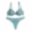 sieviešu apakšveļa, sieviešu krūšturi, sieviešu biksītes