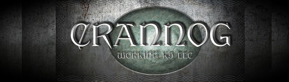 Title Banner of Page company title artistically embossed on Celtic background of a green shield.