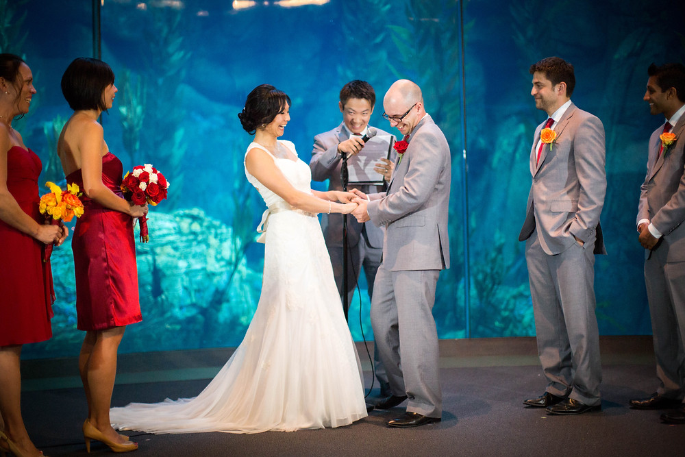 Long Beach Aquarium Wedding Photgraphy