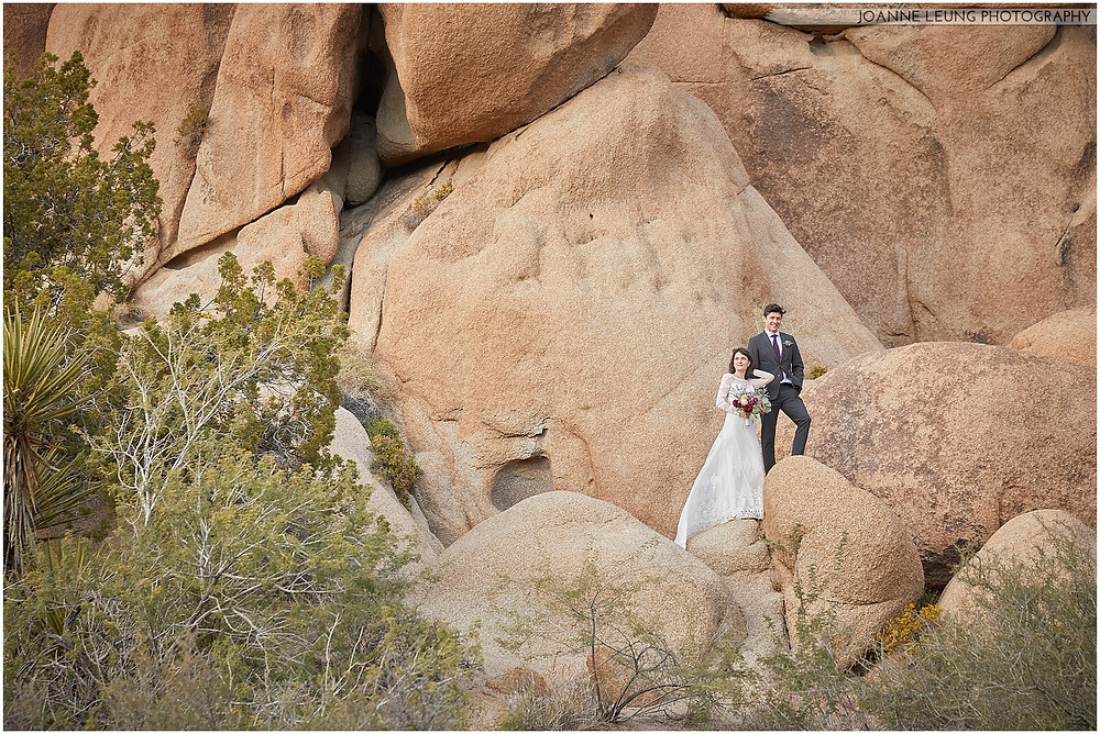 Joshua Tree Live Oak Wedding untraditional vogue posing vanity fair nature rocks