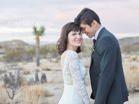 Intimate Wedding at Live Oak, Joshua Tree National Park, California ||  M + B