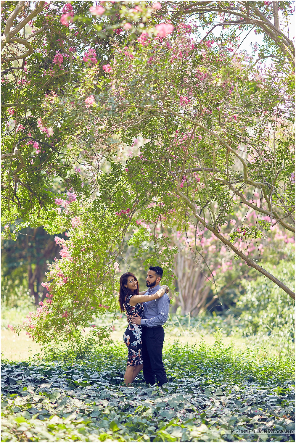 proposal la arboretum pink tree arch