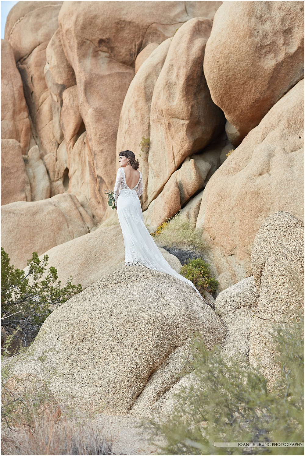 Joshua Tree Live Oak Wedding untraditional nature rocks amazing bridal portraot long dress train backless dress