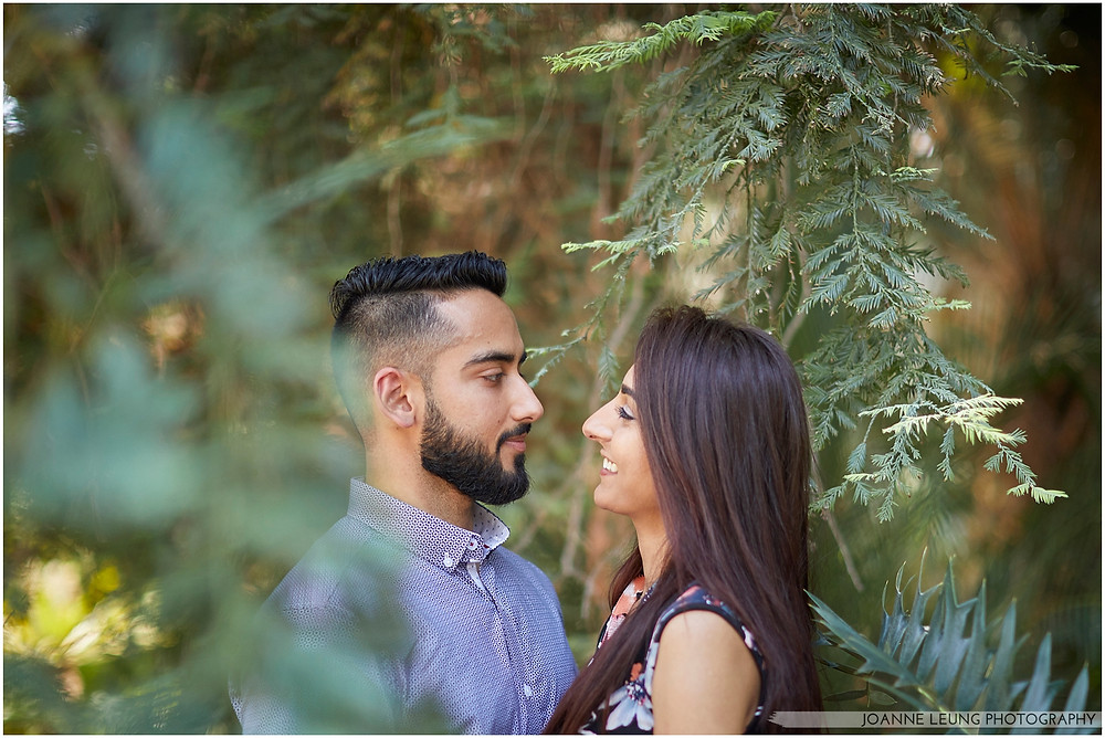 negative space pine tree engagement