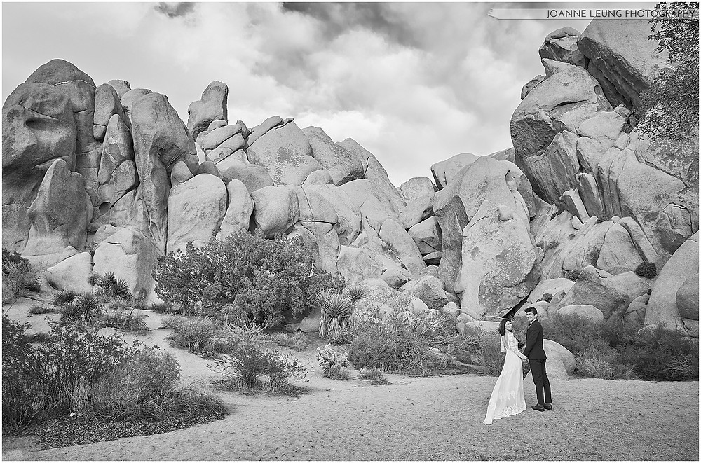 Joshua Tree Live Oak Wedding untraditional ceremony Amazing light and airy