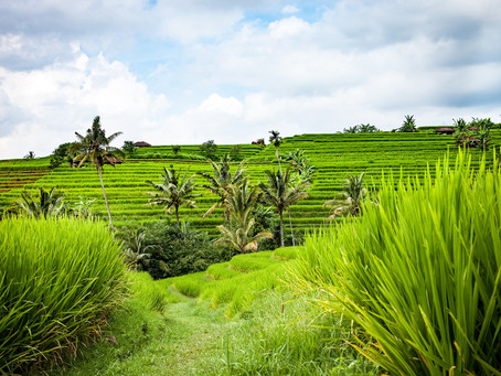 Gorgeous Bali Is Calling YOU