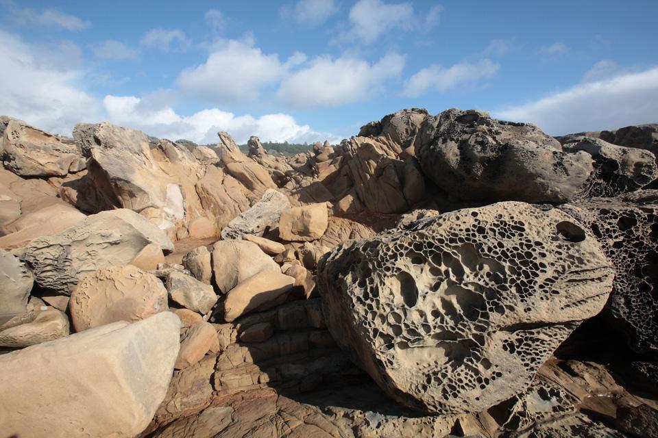 Tafoni Formation at Salt Point