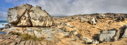 Salt Point Panorma