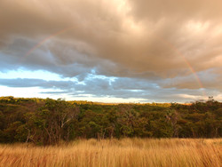 Sunset & Rainbow Over Ankarana