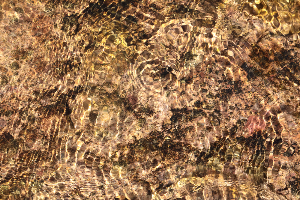 Water Ripples 6