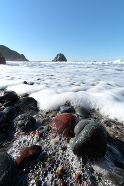 Sea Foam Delight, Sonoma Coast