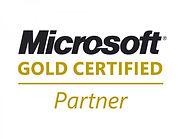 microsoft-gold-partner-logo.jpg