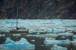 Alaska Glacier Field
