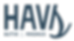 HAVS-logo.png
