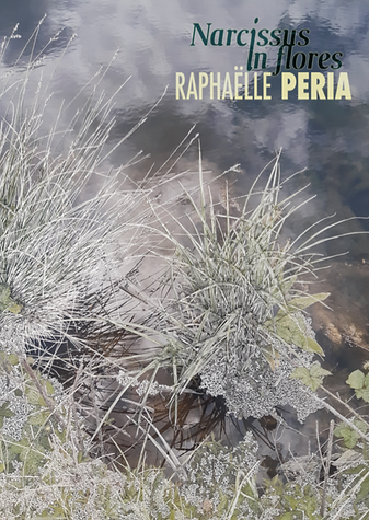 Peria flyer recto com.png