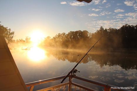 Houseboat mornings