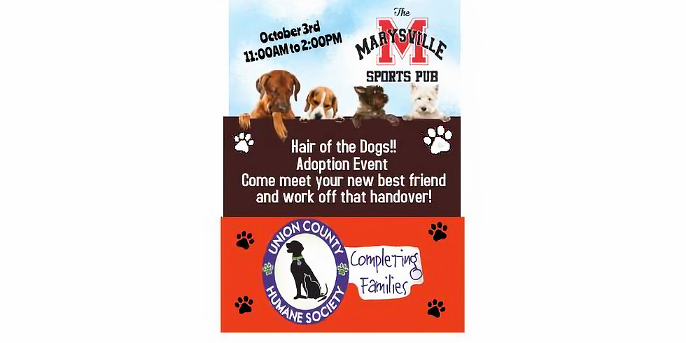 """""""Hair of the Dogs"""" Pet Adoption Event"""