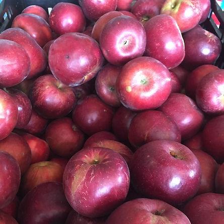 Fruit-Full Acres