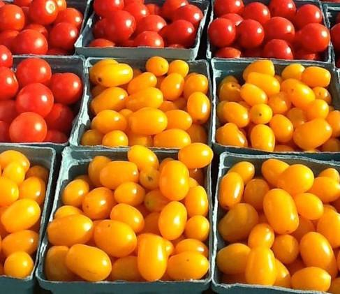 tomatosjpg