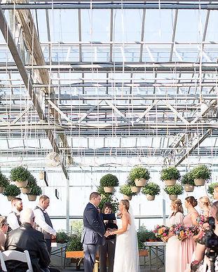 Dutch mill greenhouse.jpg