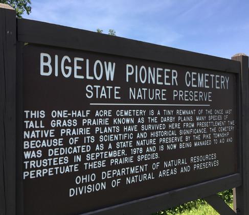 bdpsb-pioneer-cemeteryjpg