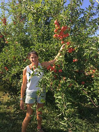 CherryHawk Farm