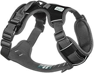 Harness - Embarl.jpg