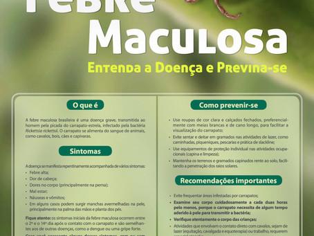 Febre Maculosa: entenda a doença e previna-se