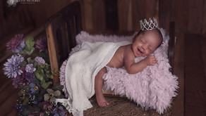 What to expect at a Newborn Photoshoot