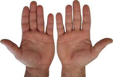 Body language of the hands