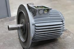 Motore elettrici