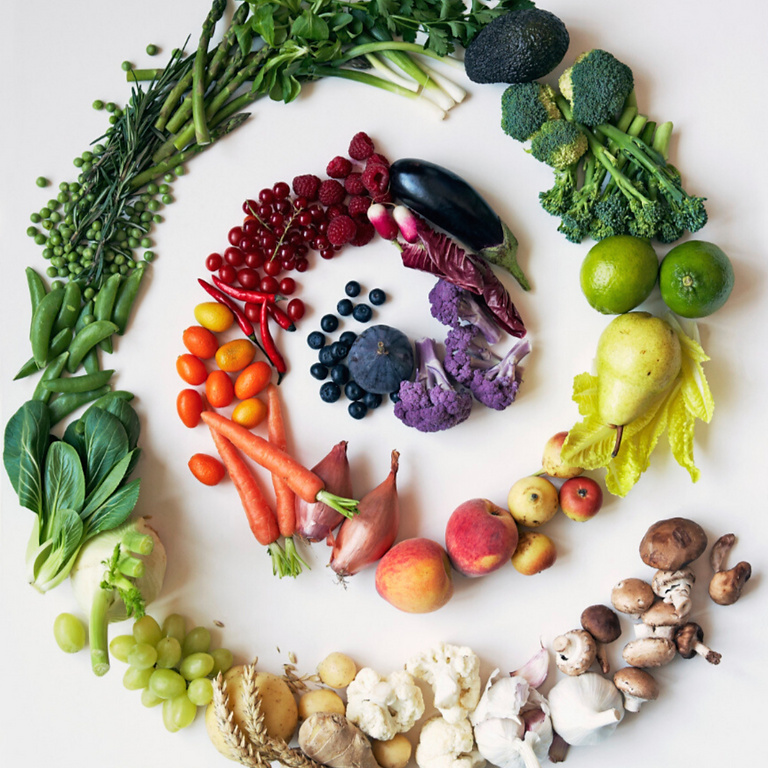 4th Annual Culinary Nutrition Conference