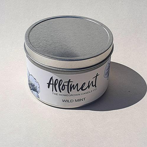 Wild Mint Candle Tin
