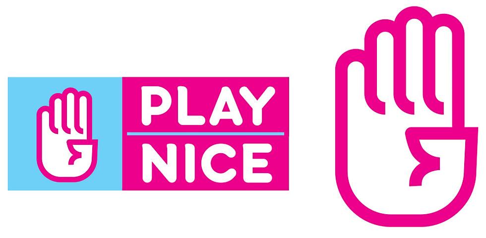 PlayNice: Mobile + Integrated Marketing + Branding