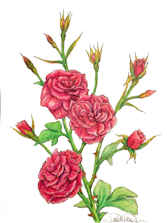 RBG Rose.jpg