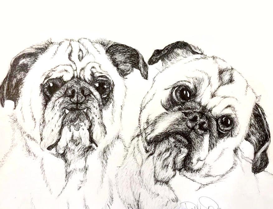 two pugs.jpg