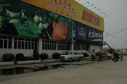 DSC_0389