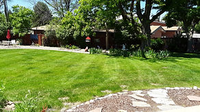 Backyard at Eileen's.jpg