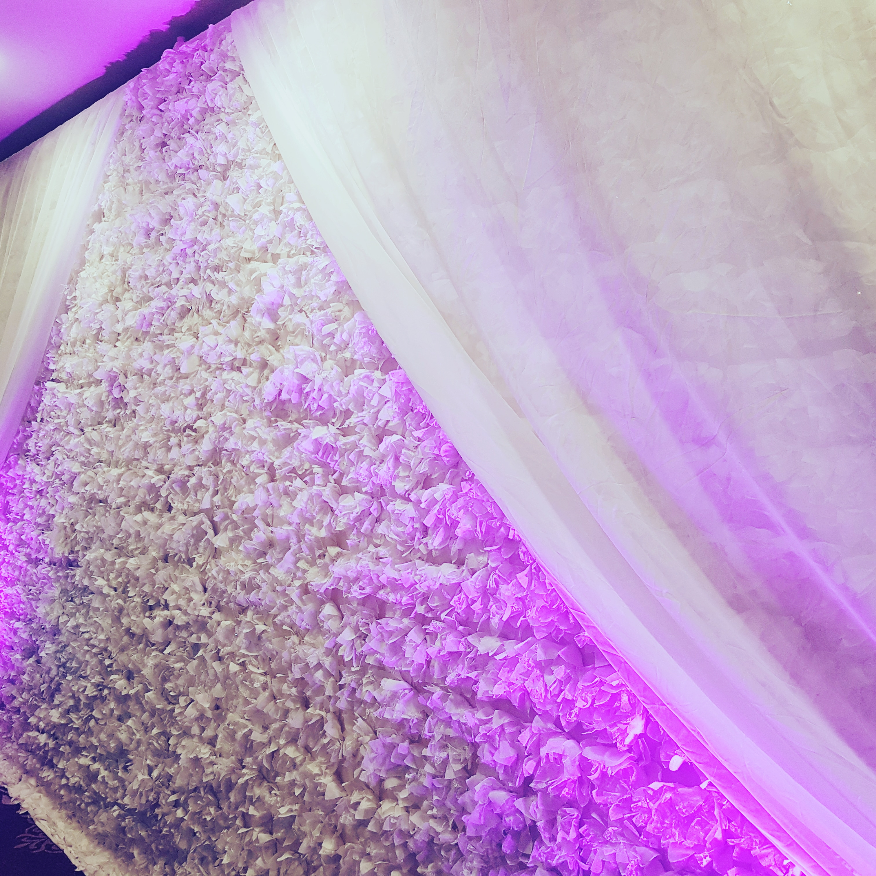 Flowerwall backdrop