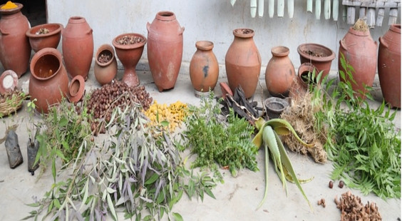 natural herbs.jpg