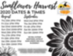 Copy of Sunflower Harvest (2).jpg