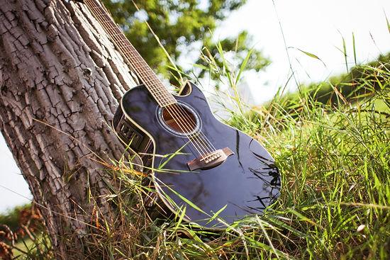 black-acoustic-cutaway-guitar-on-tree-22